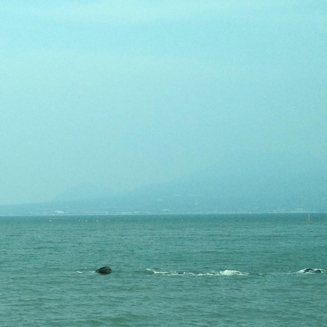 うっすら島原半島が見える 有明海 #like #sea