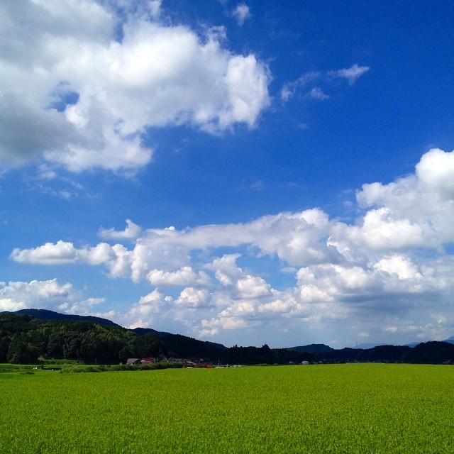 長閑 #イマソラ #空 #雲 #sky #like