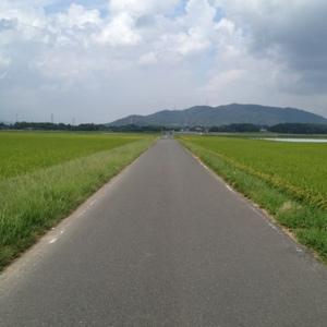 20120917-010207.jpg