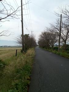 20121027-152534.jpg