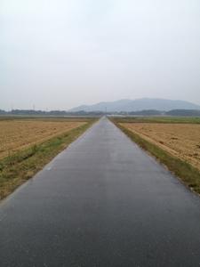 20121027-152620.jpg