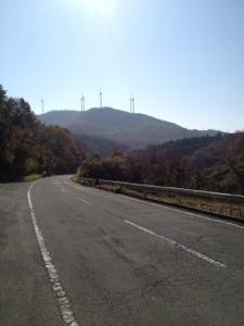 20121125-181547.jpg