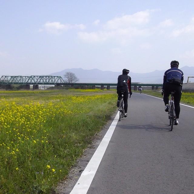 遠賀川CR #like #ロードバイク