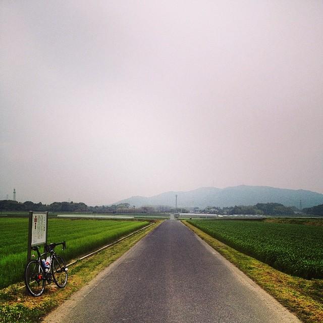 専用道路で凱旋。#イマソラ #空 #雲 #like #ロードバイク