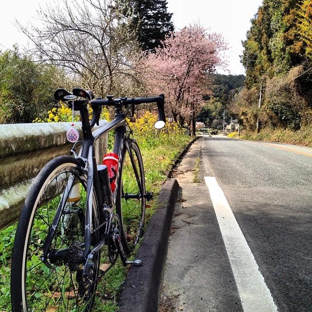 いい感じだ^_^ #イマソラ #空 #雲 #like #春 #ロードバイク